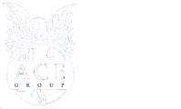 Ace Case LTD